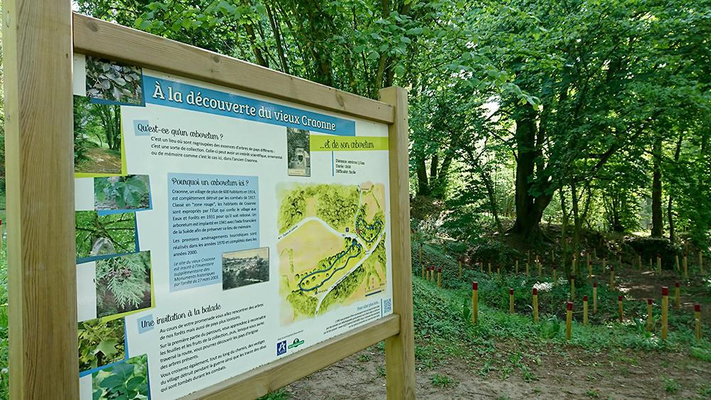 Arboretum 2019 I < Craonne < Aisne < Picardie
