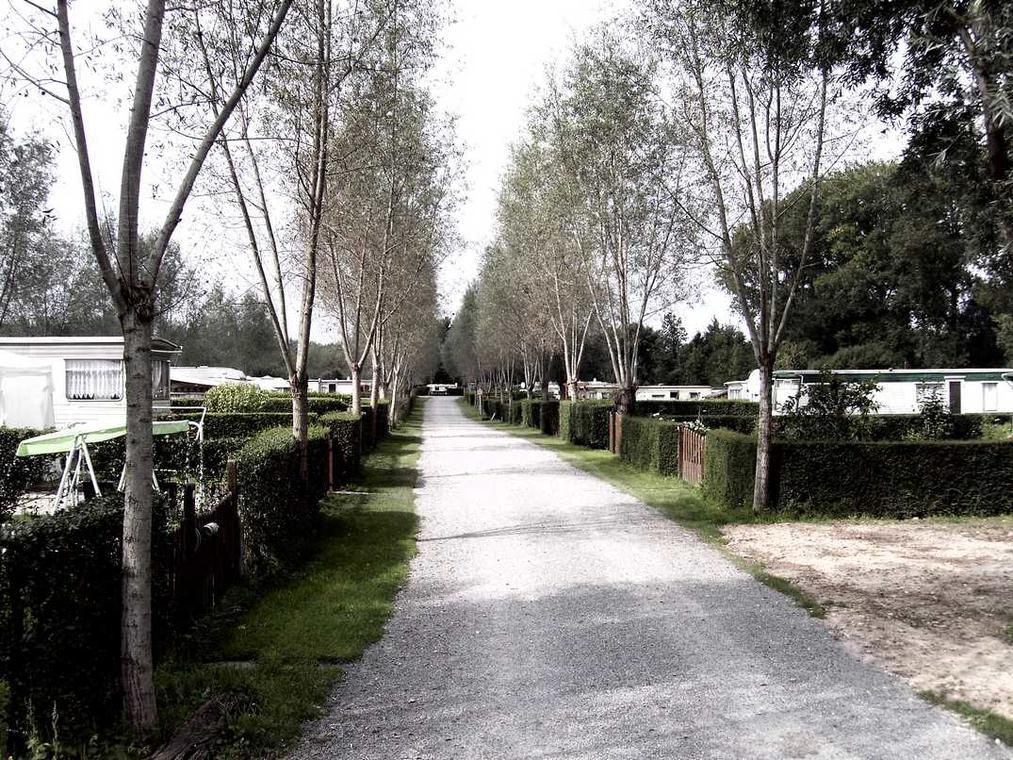 Le Marais_allée1_Dominois_Somme_Picardie