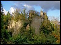 braine_vestiges_chateau_de_la_folie
