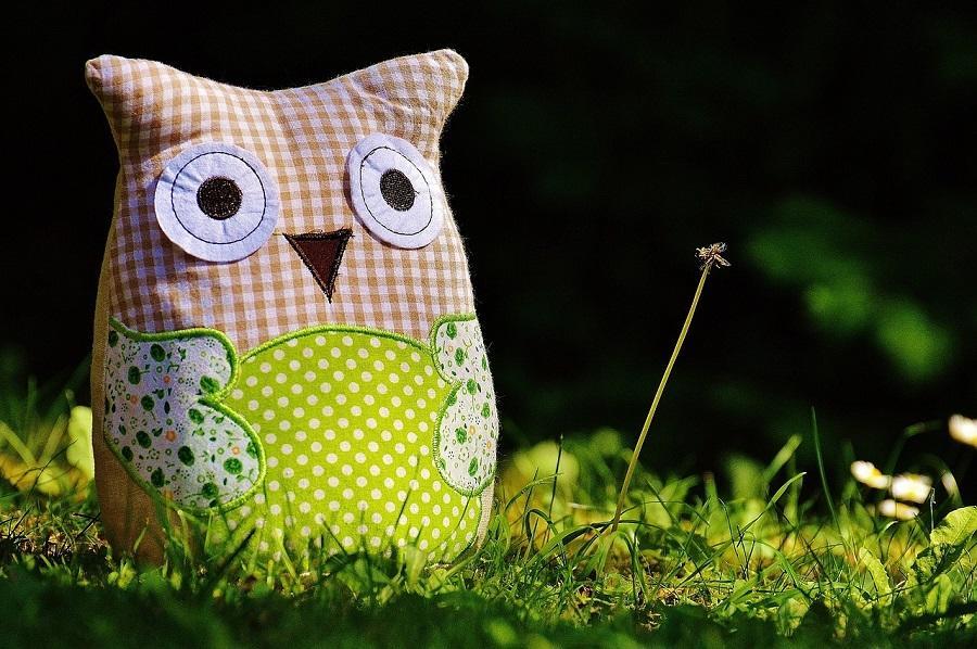 owl-800911_1280 création bis