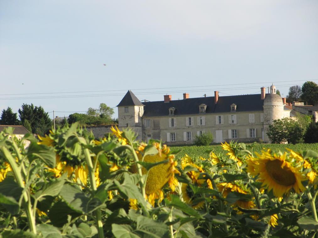 06-Château de la Rouvraye_Saint-léger-de-Montbrillais_7 août