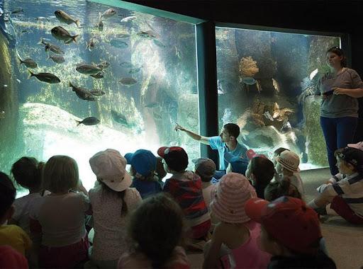 visite Aquarium