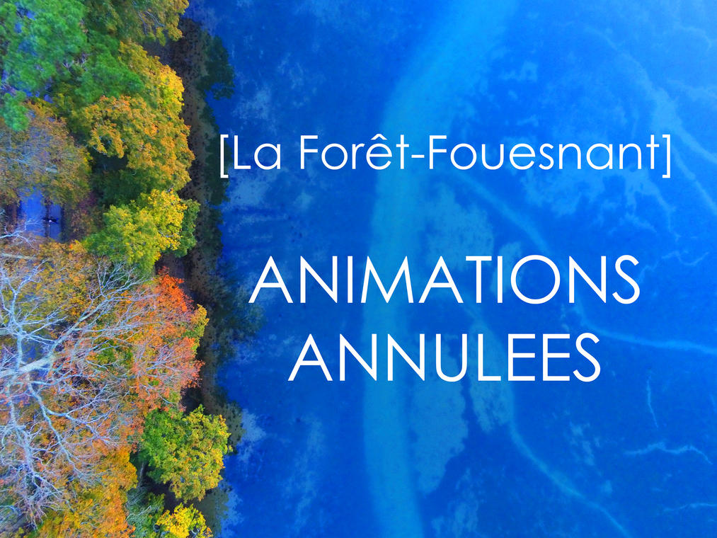 ANIMATIONS ANNULEES La Forêt-Fouesnant