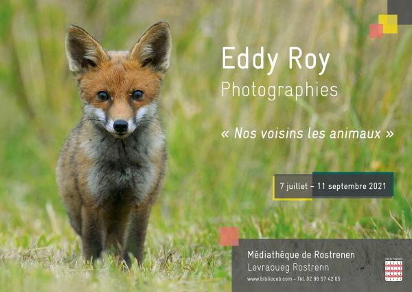 Affiche_Eddy_Roy_Renard (1)