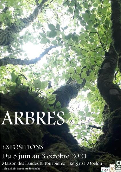 Arbres - 2