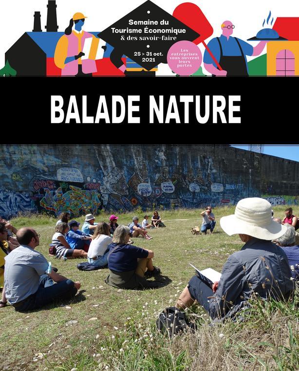 Balade nature Concasseur