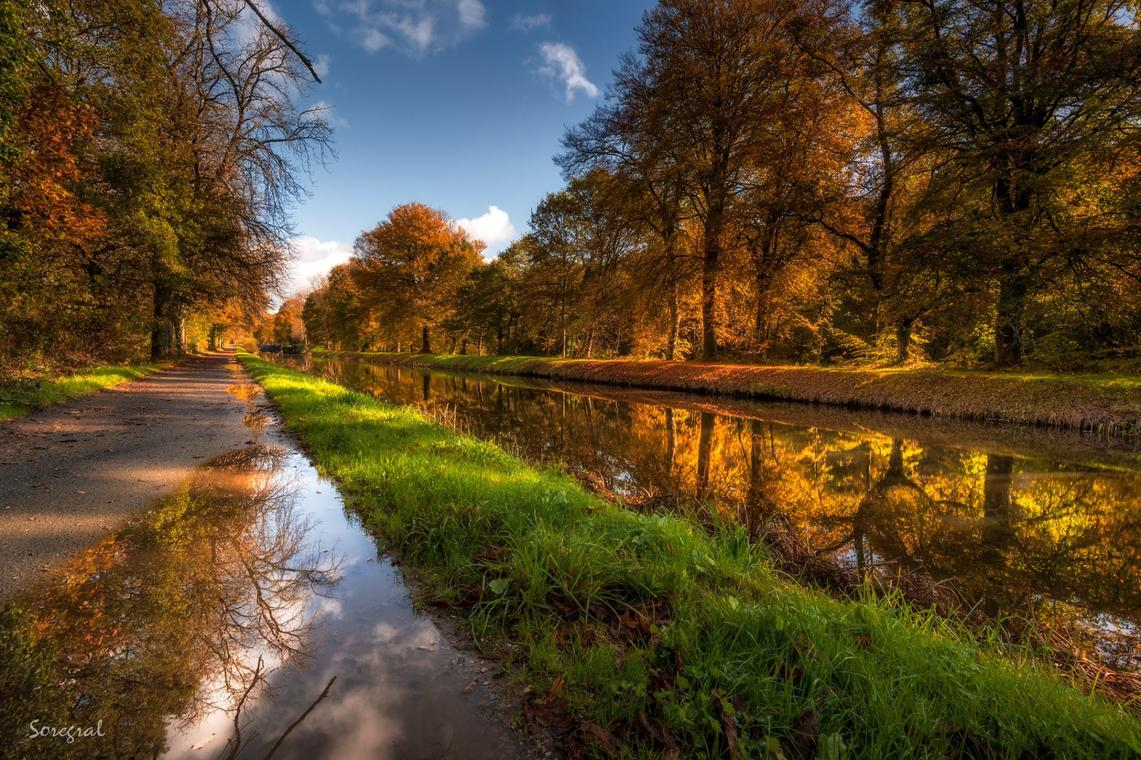 Canal22 Automne