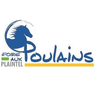 Foire-aux-Poulains-Plaintel
