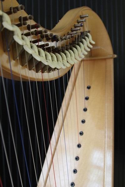 harpe_retour_aux_sources_2020_portrait_web