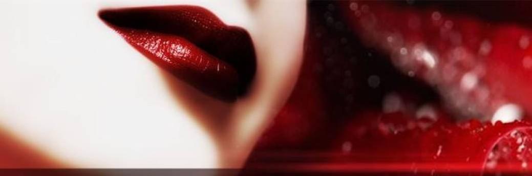 Vincenzo Bellini Belcanto académie