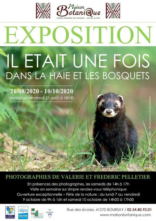 Exposition-Maison-Botanique-Boursay