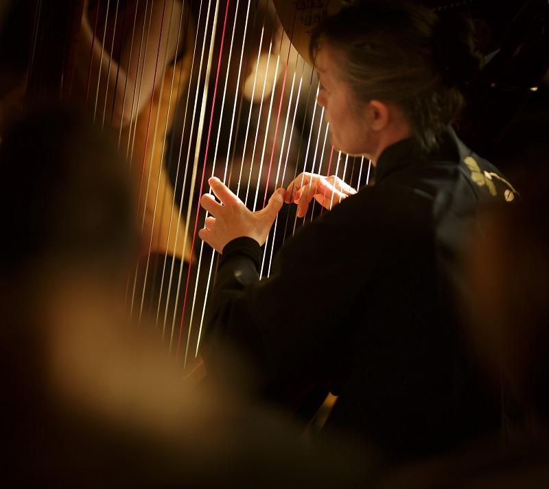 chateau-amboise-harpe-credits-chateau-amboise