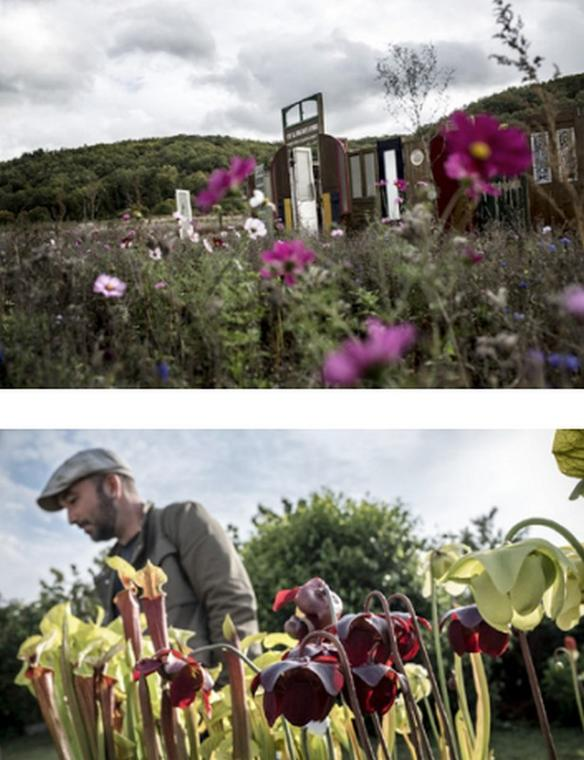 Troc-aux-plantes-Zone i-Thoré-la-Rochette