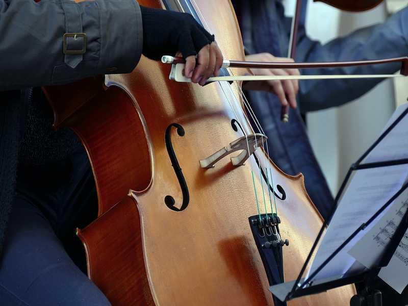 violoncelliste-musique-pixabay
