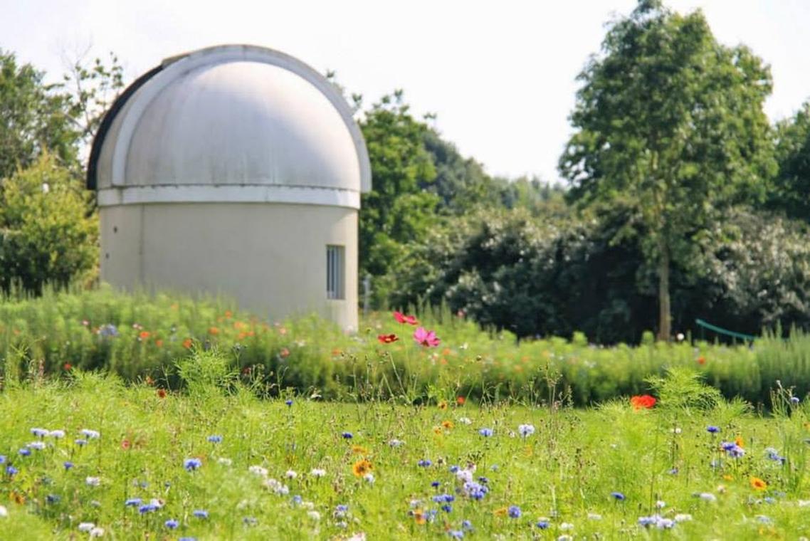 LOI-observatoire-M53-03