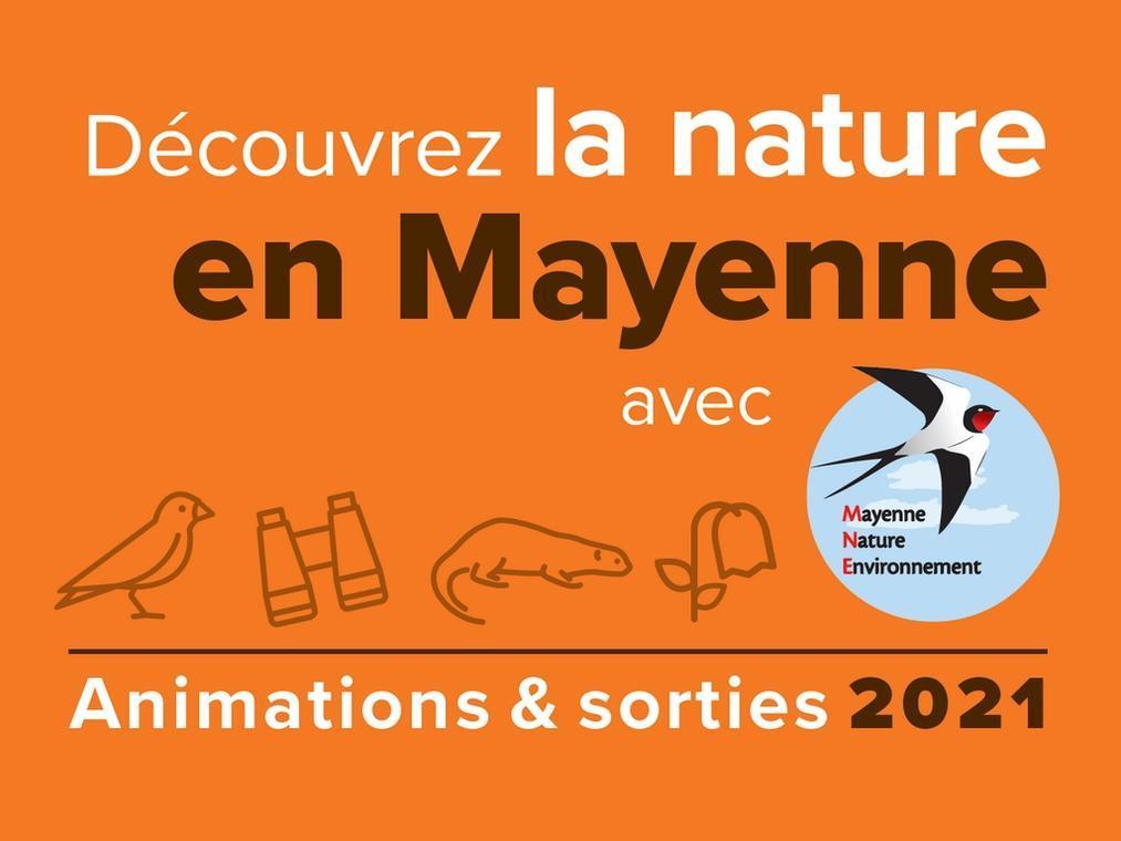 animationsetsortiesmne2021-mayenne-fma-53