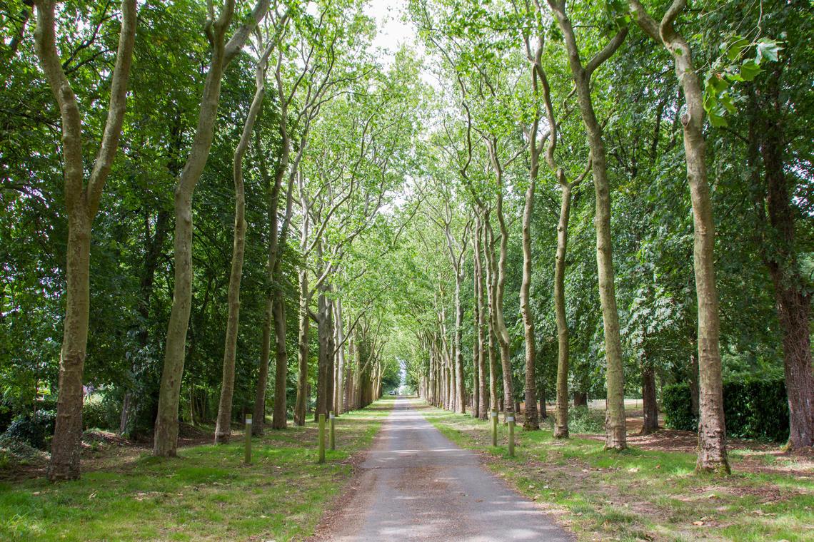 crédit FFRandonnée Mayenne