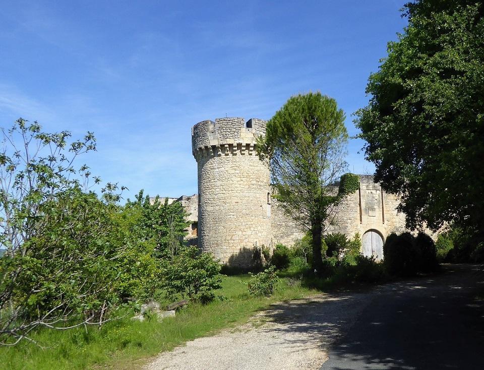Chateau de la Coste (2) - balade 10 juillet©Primula