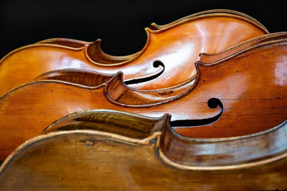 cello-4480885_1280©Ri_Ya