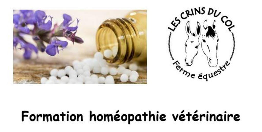 formation-homeopathie-veterinaire
