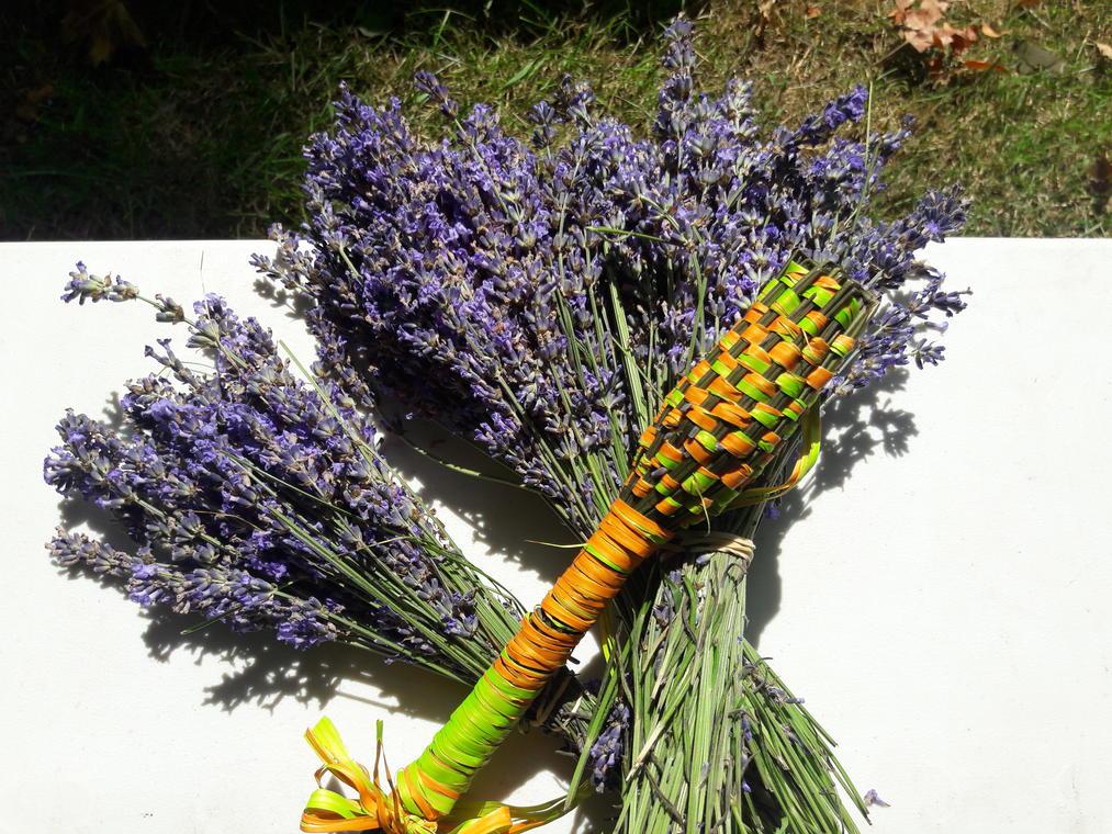 lydie-bouquet et fusette
