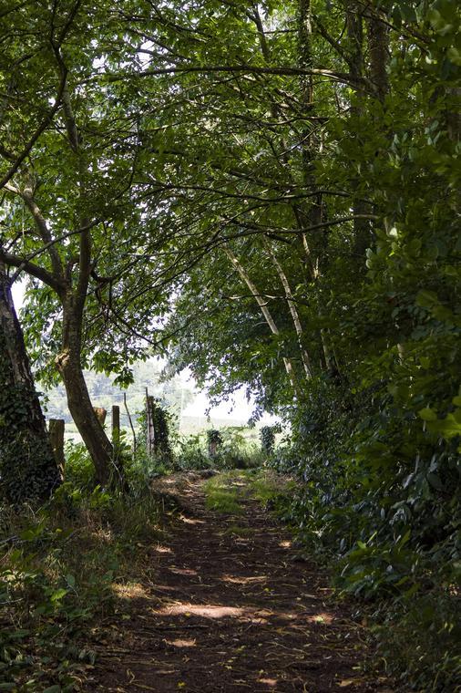 Montaudin-Pihoraye-Bocage-Mayennais-Tourisme--6-