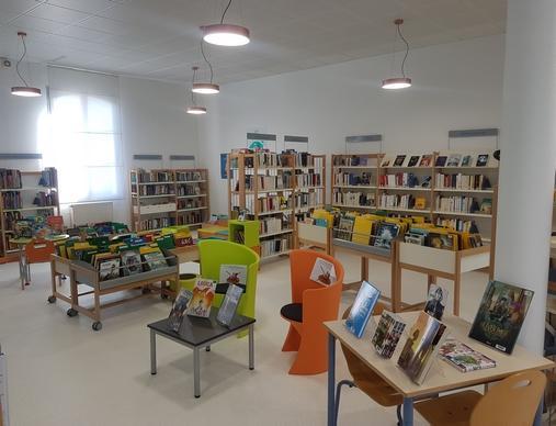 biblio-saint-mars-de-coutais-44-loi-1