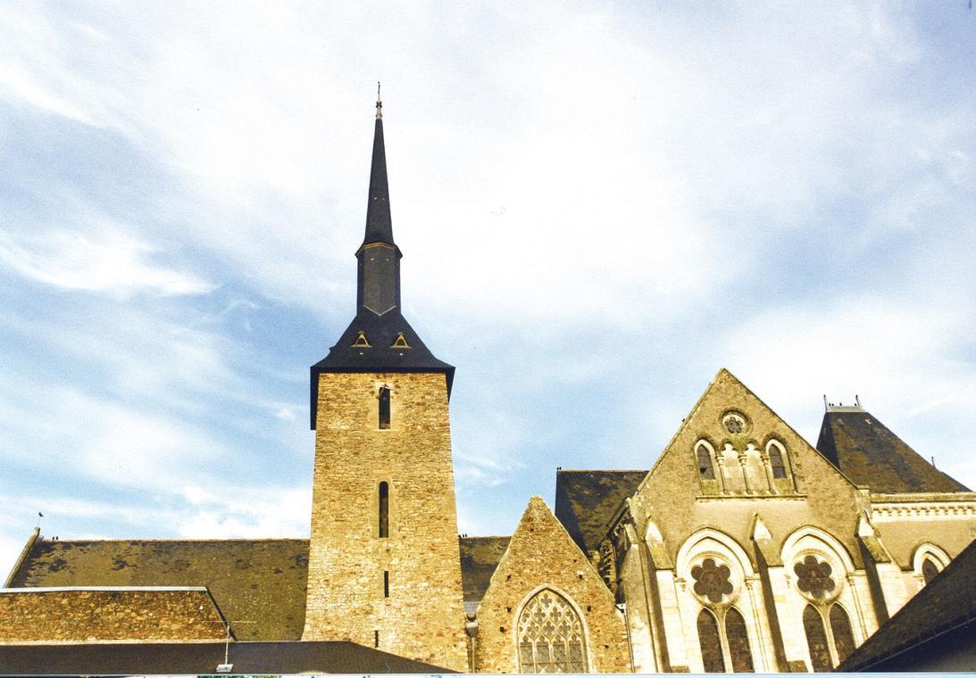 église-Saint-Martin-de-Vertou-le-Lion-d'Angers-49-pcu