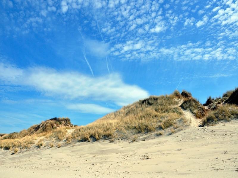 Dunes_plage