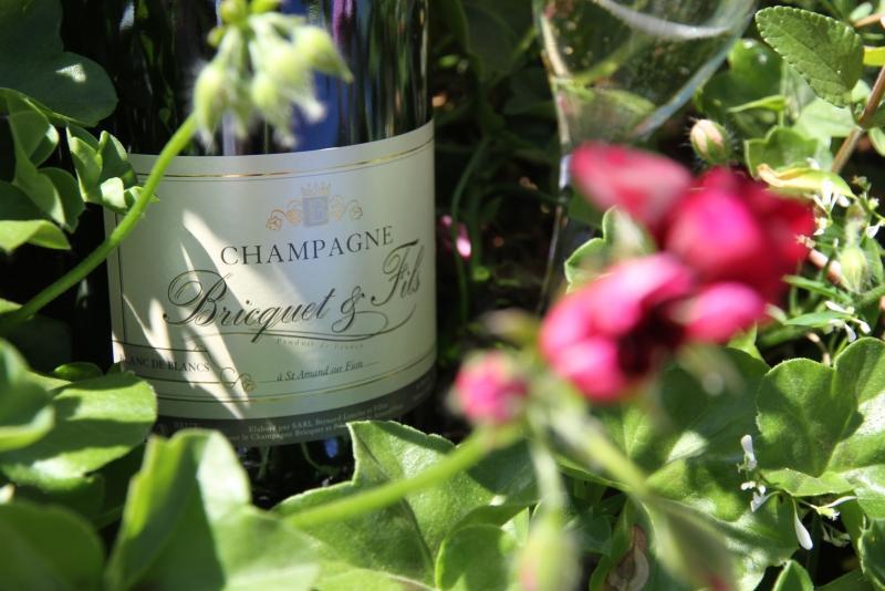 champagne-bricquet-et-fils-saint-amand-sur-fion