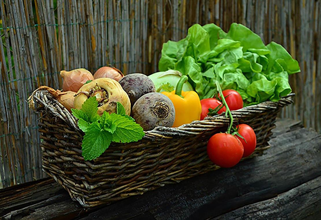 vegetables-800X600