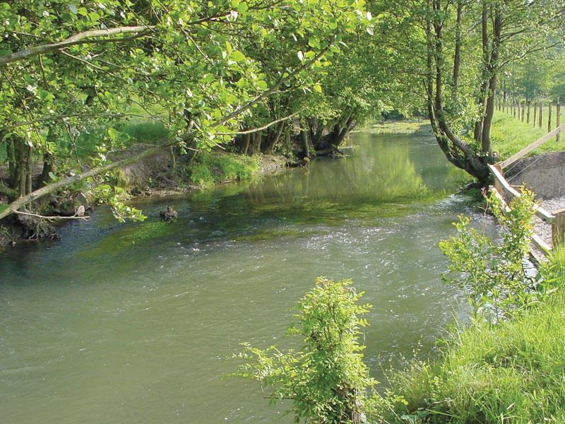 Parcours de Corbon - Perche