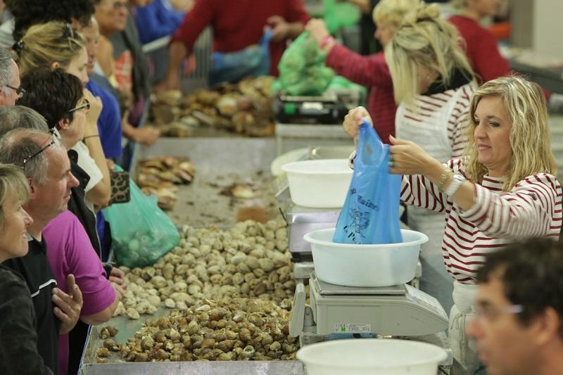 Photo 132 - toute la mer - Vente de coquillages TMP - Crédit photo  CCI Ouest Normandie