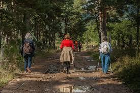 marcheurs sur chemin