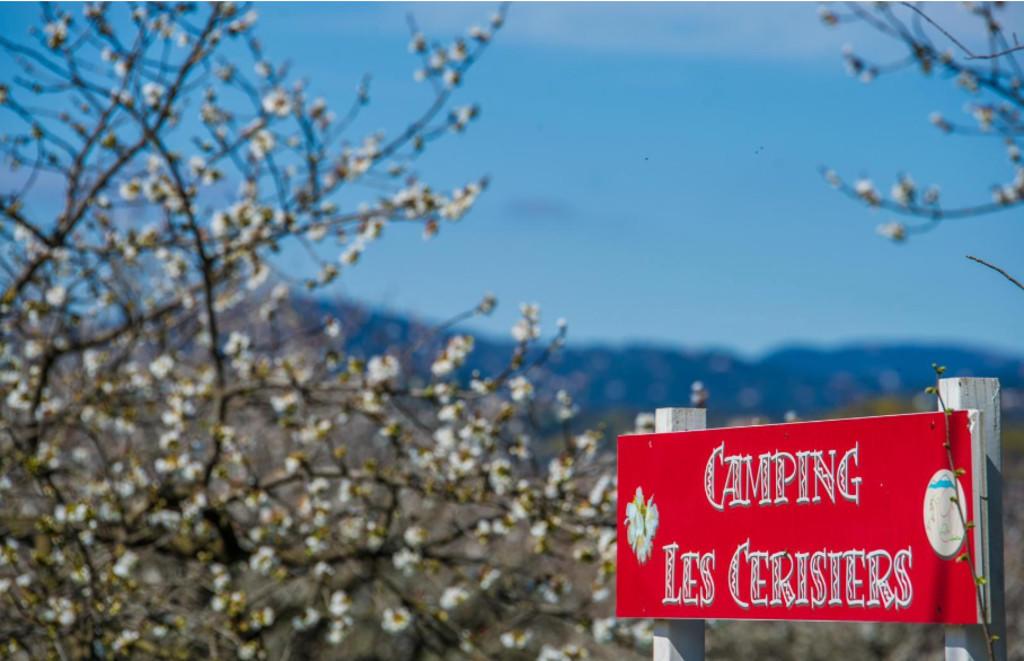 Camping cerisiers Céret