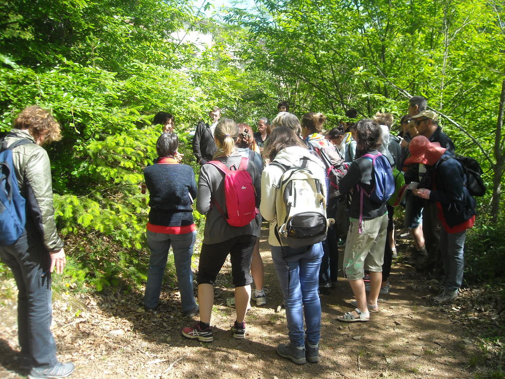 Groupe sortie botanique