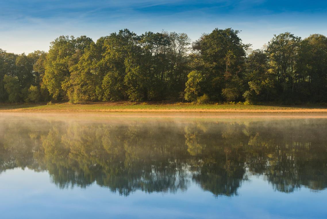 Montaubry_plage des Patins et forêt_automne_2019©oscara-photographe_Creusot Montceau Tourisme83b