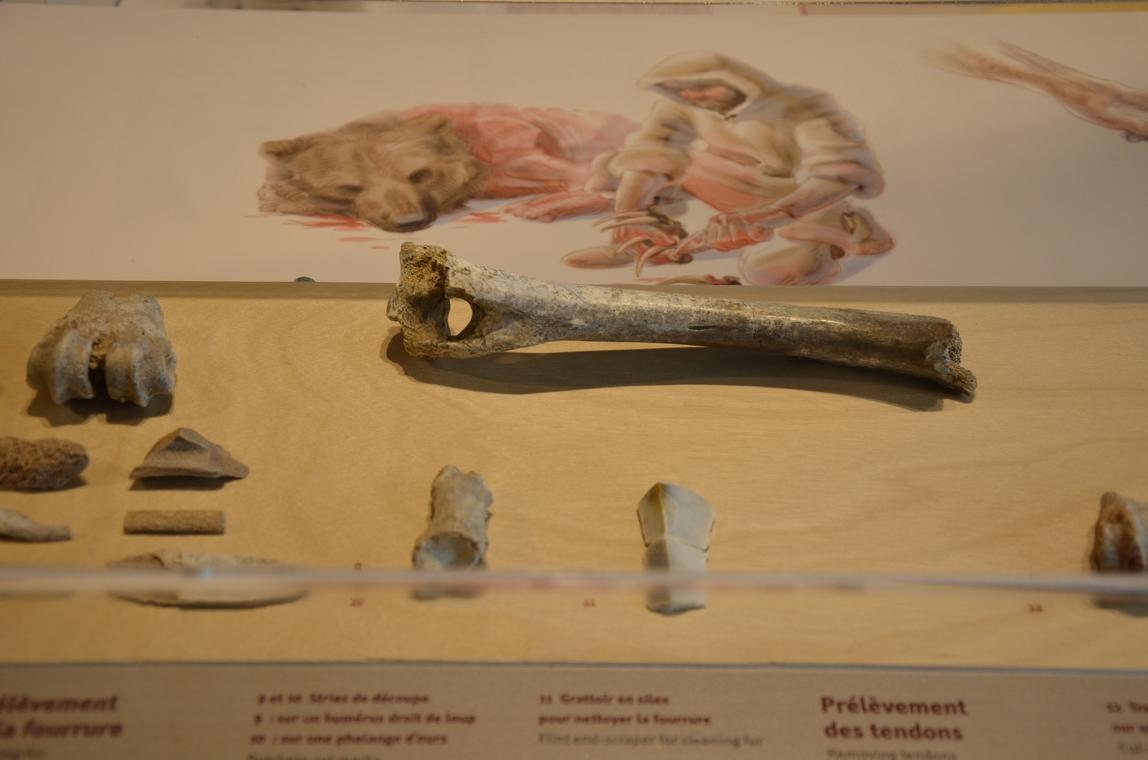 Musée de Préhistoire - Nourriture préhistoire