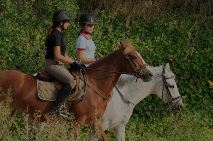 Centre-equestre-La-Montglonnière1