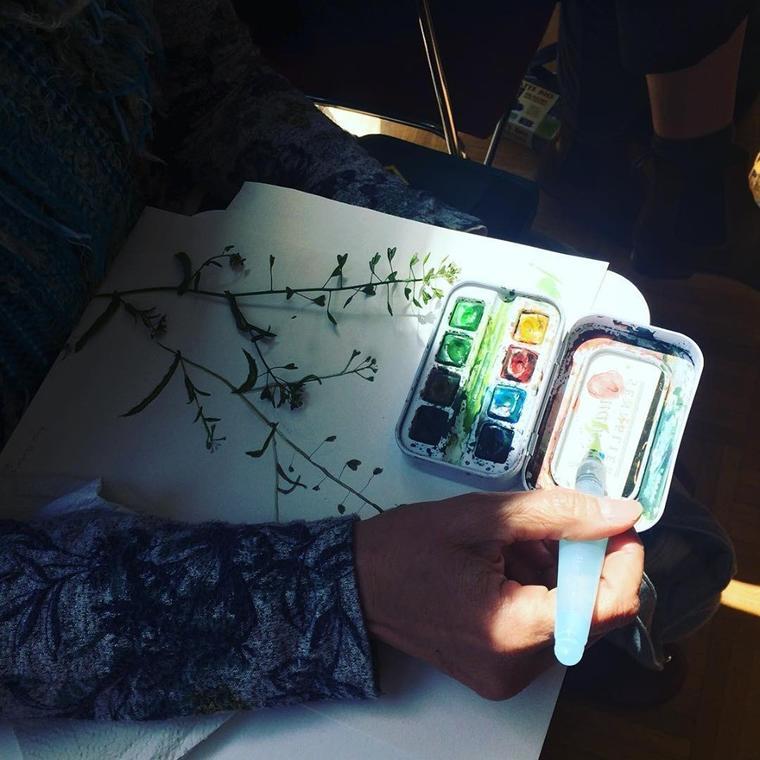 Ecocentre de Danne - Atelier d'initiation au dessin botanique