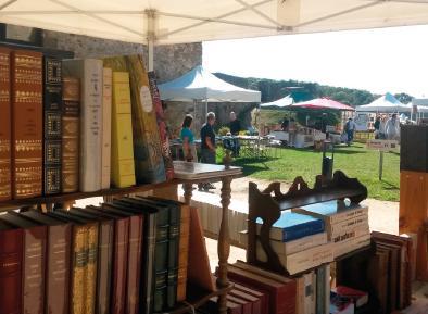 FMA53 - 5ème fête du livre au Château de Sainte-Suzanne