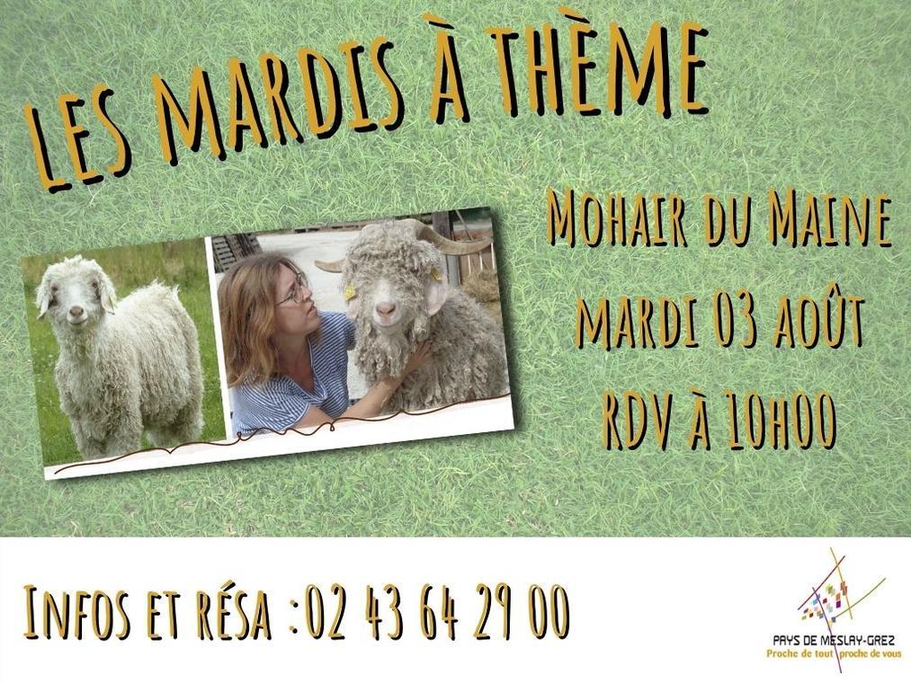 FMA-mardi-theme-mohair