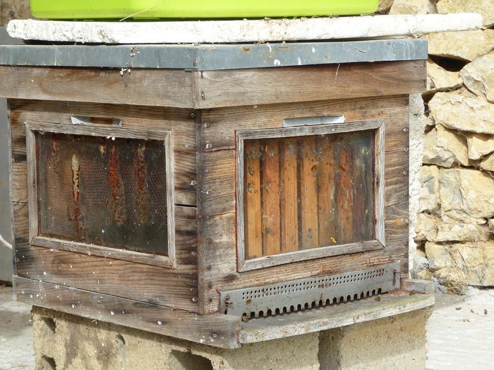 PROD53ruches ferme aux abeilles(3) redimensionné