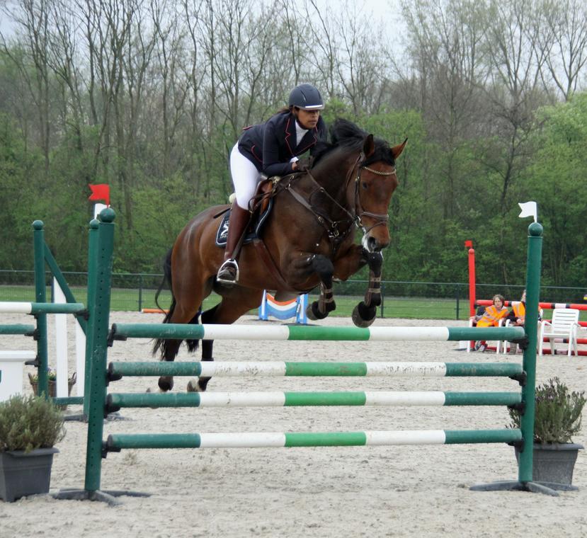 horseback-riding-4173041-1920-martine-Kooi-de-Pixabay-67ca74832418496c805cc37e12b6e835