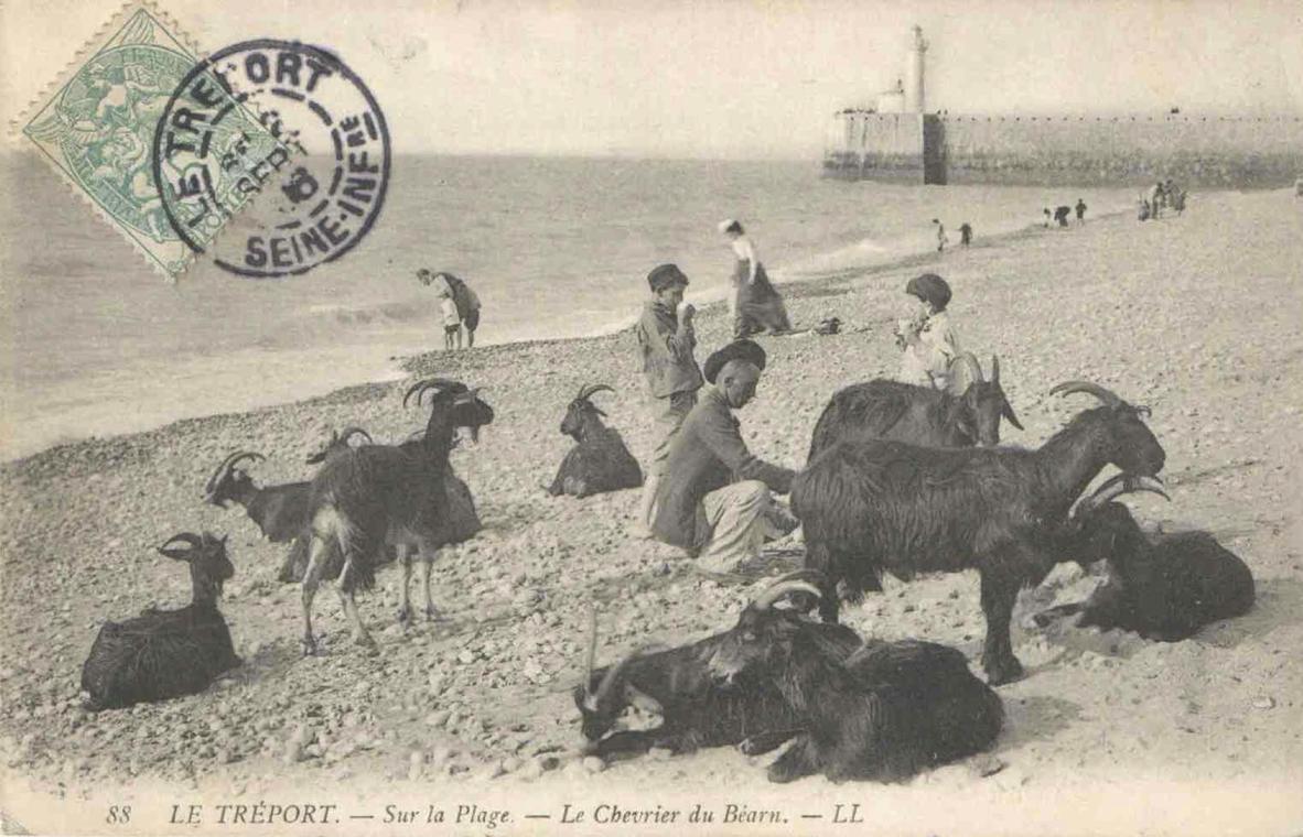 Le Tréport Sur la plage. Le chevrier du Béarn 1906 rec