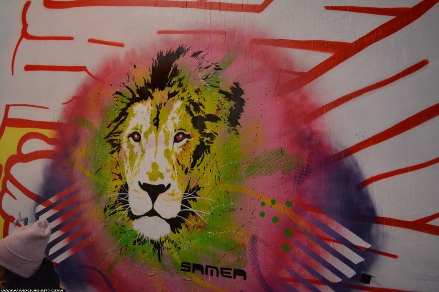 SAMER DTC artiste graffeur du 17 au 29 aout 2021