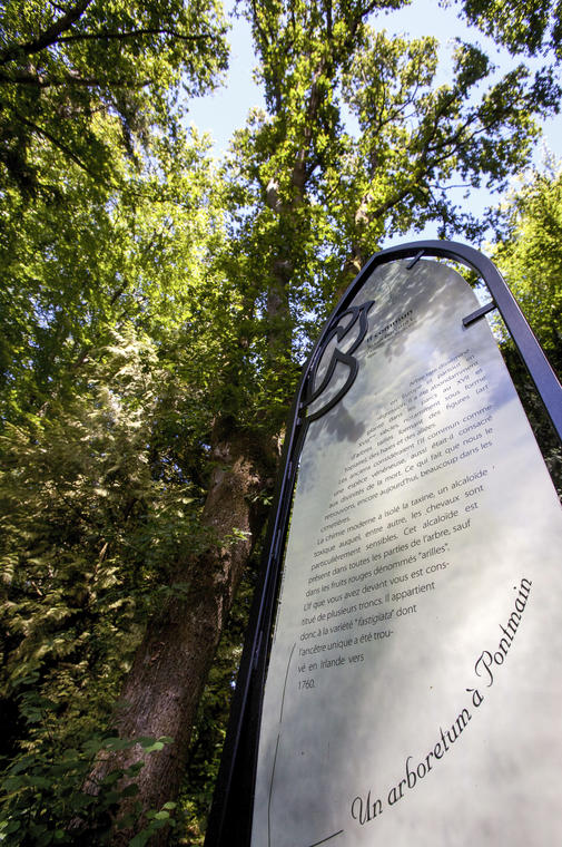 pontmain-arboretum