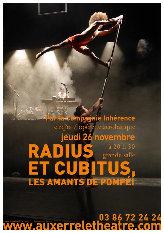 Affiche A3 Radius et Cubitus