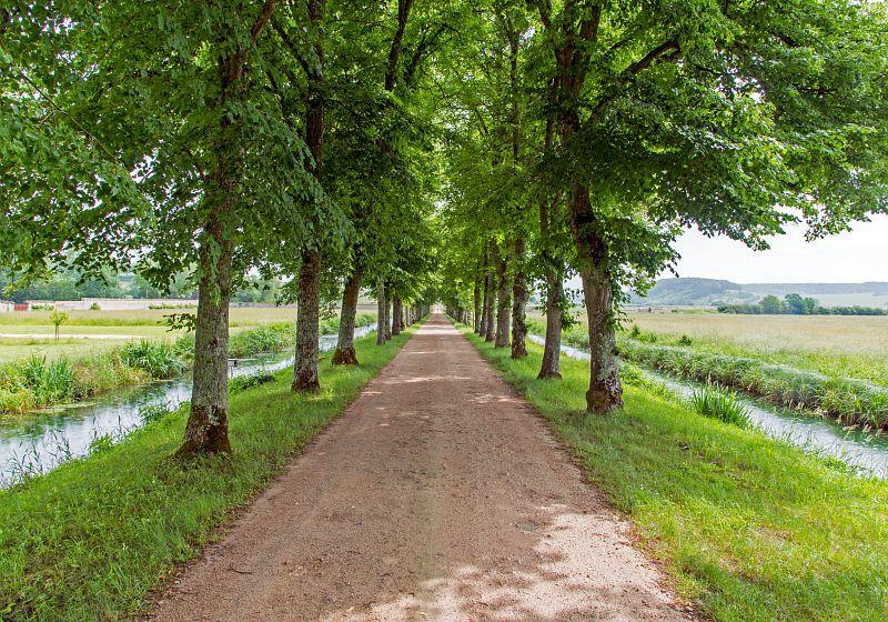 Alain_DOIRE__Bourgogne-Franche-Comte_Tourisme-BFC_0013971