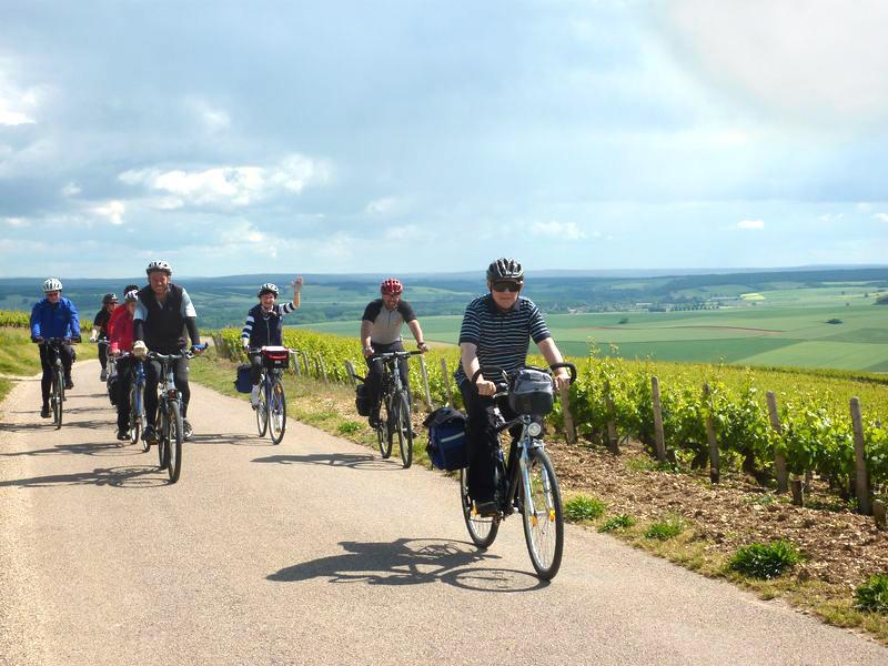 Cyclistes vigne